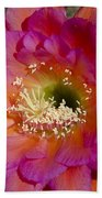 Pink And Orange Cactus Flower Beach Towel