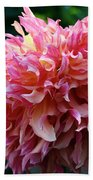 Pink Frills Beach Towel