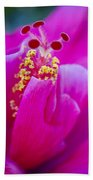 Pink Hibiscus 2 Beach Sheet
