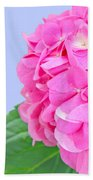 Pink Hydrangea Beach Towel