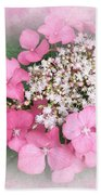 Pink Lace Cap Hydrangea Flowers Beach Towel