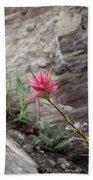 Pink Mountain Flower Beach Towel
