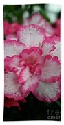 Pink Party Beach Towel