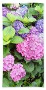 Pink Purple Hydrangeas Beach Towel