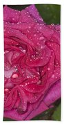 Pink Rose Wendy Cussons With Raindrops Beach Towel