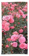 Pink Roses Canvas Beach Towel