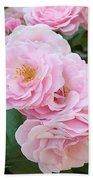 Pink Roses II Beach Towel