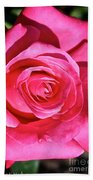 Pink Sunrise Rose Beach Towel