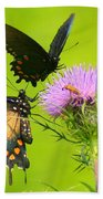 Pipevine Swallowtails In Tandem Beach Towel