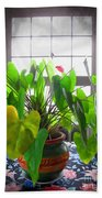 Planter In France Beach Towel