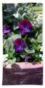 Planter Of Purple Pansies And White Alyssum Beach Towel