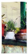 Plants On Porch Beach Towel