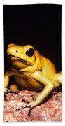 Poison Dart Frog Beach Towel