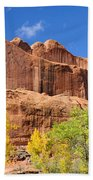 Poison Spider Mesa In The Fall Beach Towel by Gary Whitton