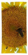 Pollen Hunter Beach Towel