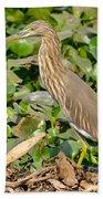 Pond Heron Beach Towel