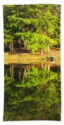 Pond Reflection Guatemala Beach Towel