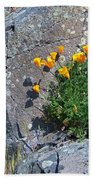 Poppy On The Rocks Beach Towel