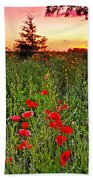 Poppy Patch And Previsualization Beach Towel