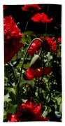 Poppy Pompom Beach Towel