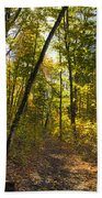 Portal Through The Woods Beach Towel
