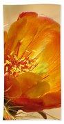 Portrait Of A Cactus Flower Beach Towel