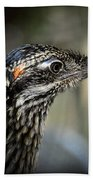 Portrait Of A Roadrunner  Beach Towel