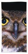 Portrait Of Great Horned Owl Beach Towel