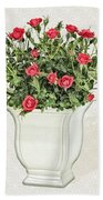 Pot Of Red Roses On Lace Background Beach Towel