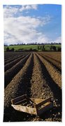 Potato Field, Ireland Beach Towel