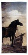 Potter: Horses, 1649 Beach Towel