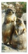 Prairie Dog Formal Portrait Beach Towel