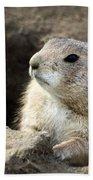 Prairie Dog Lookout Beach Towel