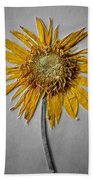 Pressed Sunshine Flower Beach Towel