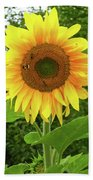 Pretty Sunflower  Beach Towel