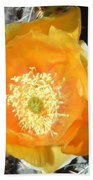 Prickly Pear Cactus Flower Beach Towel