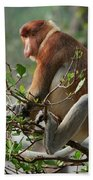 Proboscis Monkey Nasalis Larvatus Male Beach Towel