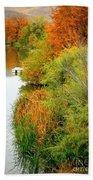 Prosser Autumn Docks Beach Towel by Carol Groenen