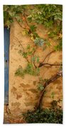 Provence Door 5 Beach Towel