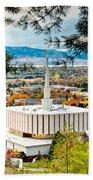 Provo Temple Pine Frame Beach Towel