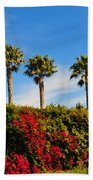 Pt. Dume Palms Beach Towel
