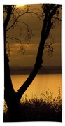 Pugent Sound Silhouetted Tree Beach Towel