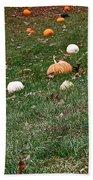 Pumpkins Beach Towel by Susan Herber