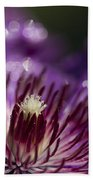 Purple Clematis And Bokeh Beach Towel