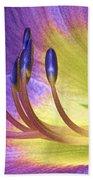 Purple Daylily Beach Towel