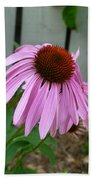 Purple Echinacea Beach Sheet