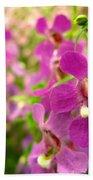 Purple Field Beach Towel