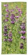 Purple Flower Field Beach Towel