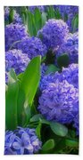Purple Hyacinths Beach Towel