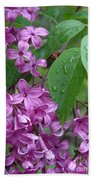 Purple Lilac Beach Towel